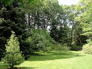 Arboretum der Wellesley College Botanic Gardens. © Daderot