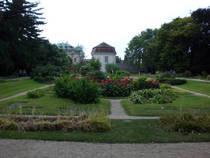 Botanischer Garten der Universität Wien © Feldkurat Katz