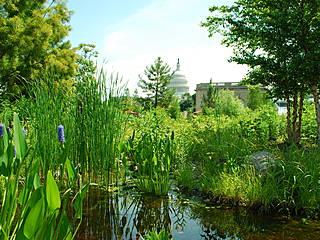 Blick vom Botanischen Garten auf das Kapitol. © United States Botanic Garden